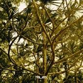 Boychild (Remixes) - EP