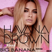 Big Banana (R3hab Extended Mix) [feat. R3hab] - Single