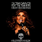 Mighty High (feat. The Trammps) [Remixes] - Single