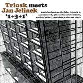 1+3+1 (Triosk Meets Jan Jelinek)