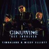 Get Involved (Remixes) [feat. Timbaland & Missy Elliott]