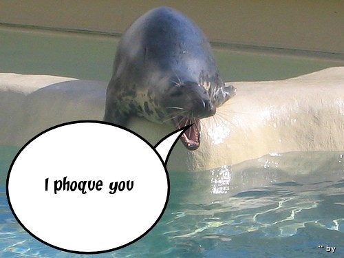 I Phoque You | Created with fd's Flickr Toys. | Coincoyote ...