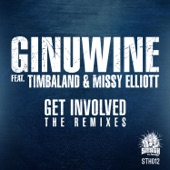 Get Involved (feat. Timbaland & Missy Elliott) [The Remixes] - Single