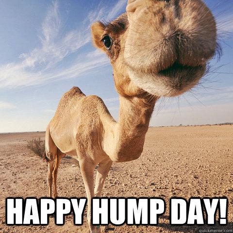 b_1_q_0_p_0.jpg?u=http%3A%2F%2F4.bp.blogspot.com%2F-yWPp_lv5bu0%2FVa_-xeAU_VI%2FAAAAAAAADNM%2FcS-1WWLd_Io%2Fs1600%2F123355-Happy-Hump-Day.jpg&q=0&b=1&p=0&a=1