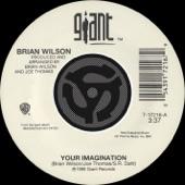Your Imagination / Your Imagination (A Cappella) [Digital 45]