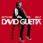 Nothing But the Beat (Deluxe Version)