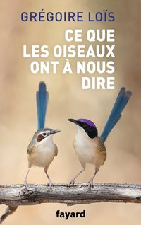Romy, une longue nuit de silence - S.Briand - Librairie ...