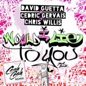 Would I Lie to You (Cash Cash Remix) - Single