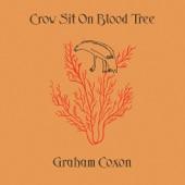 Crow Sit On Blood Tree