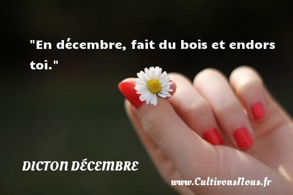 BON DIMANCHE B_1_q_0_p_0.jpg?u=http%3A%2F%2Fwww.cultivonsnous.fr%2Fdictons-img%2F108210-en-decembre-fait-du-bois-et-endors-toi