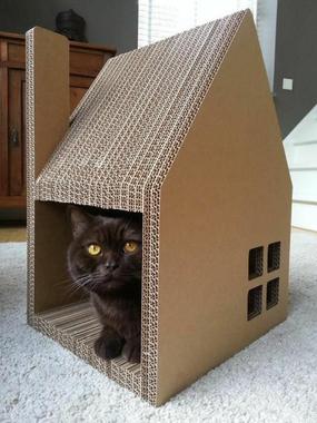 La maison de chat en carton en plusieurs photos ...