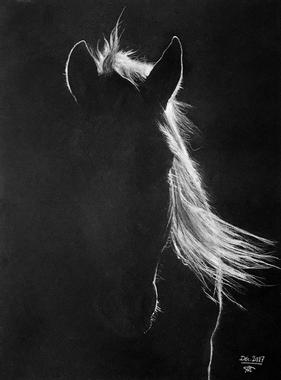 Trojan, le cheval - Les dessins de kofkof