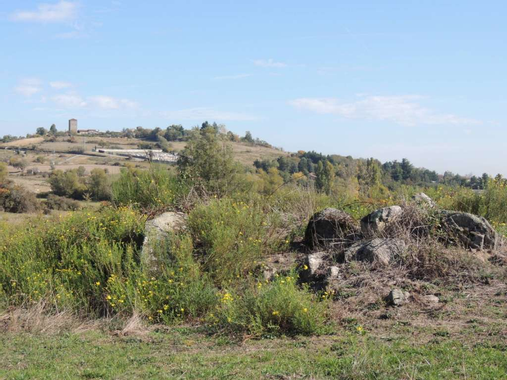Circuit n°231 - Les Landes de Montagny • VTT » Mountnpass OAD