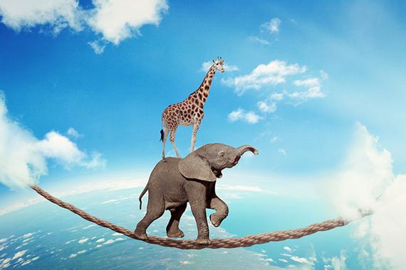 La confiance ou la peur | Le blog de l'Efficacité ...