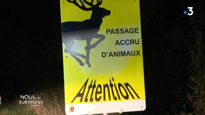 """""""Nous, les Européens"""". Des chasseurs chassés ? - France 3 ..."""