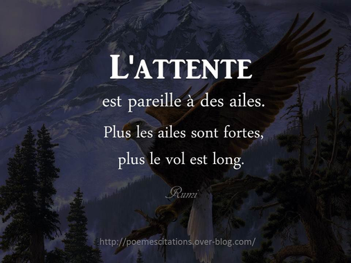 citation l'attente