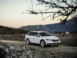 Download Skoda Octavia Scout 2017 Wallpapers Images Photos Pictures
