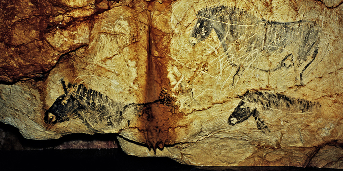 New scanning in the cave of Cosquer
